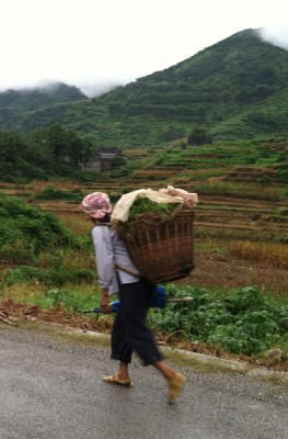 Peasants on their way to work in the morning in the village of Poyue